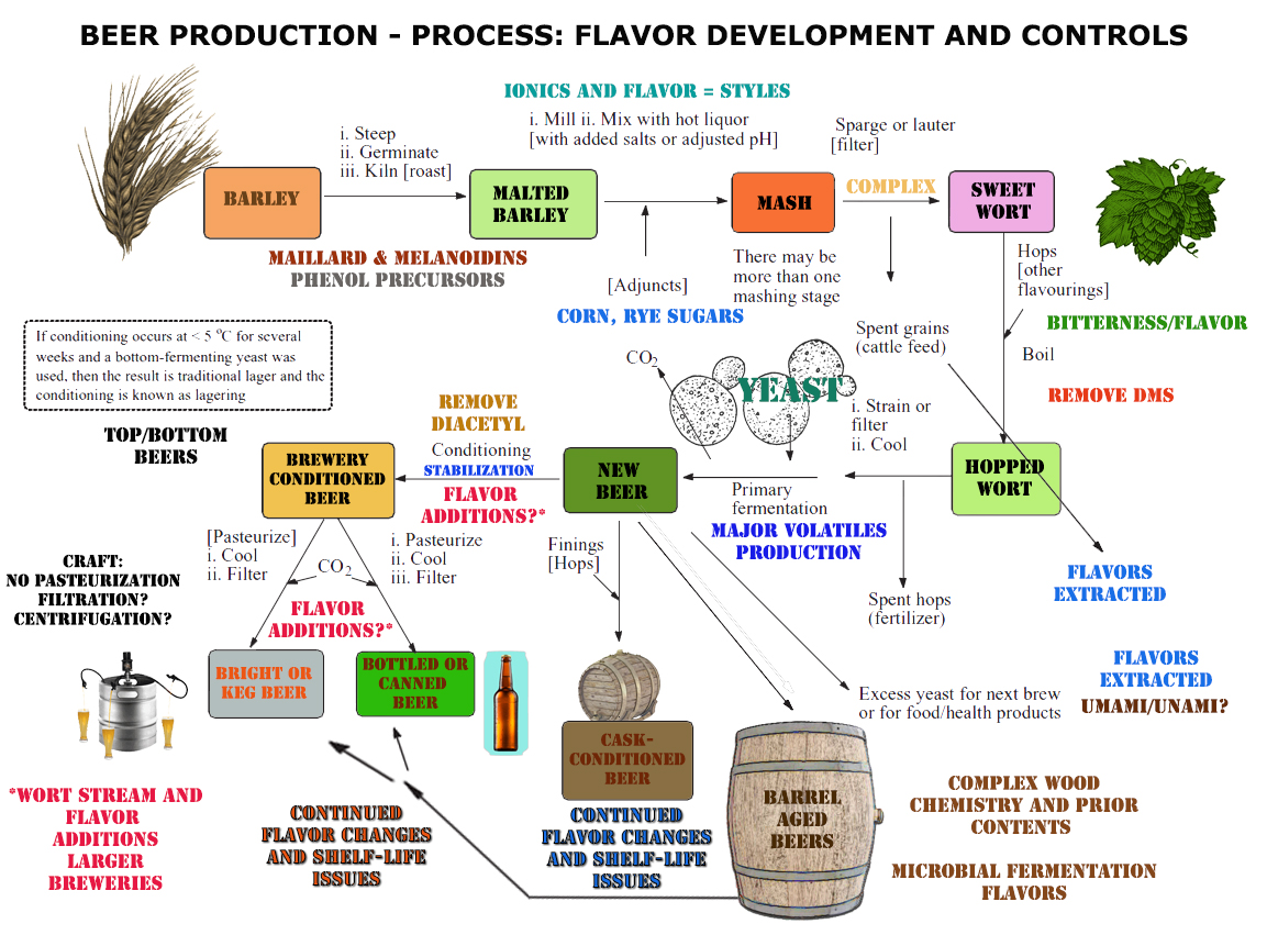 Flavour production in a nutshell the brewers journal figure 1 nvjuhfo Gallery