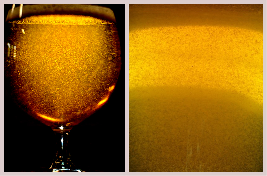 Figure 1. Two examples of very heavy haze and appearance of particulates in beer.