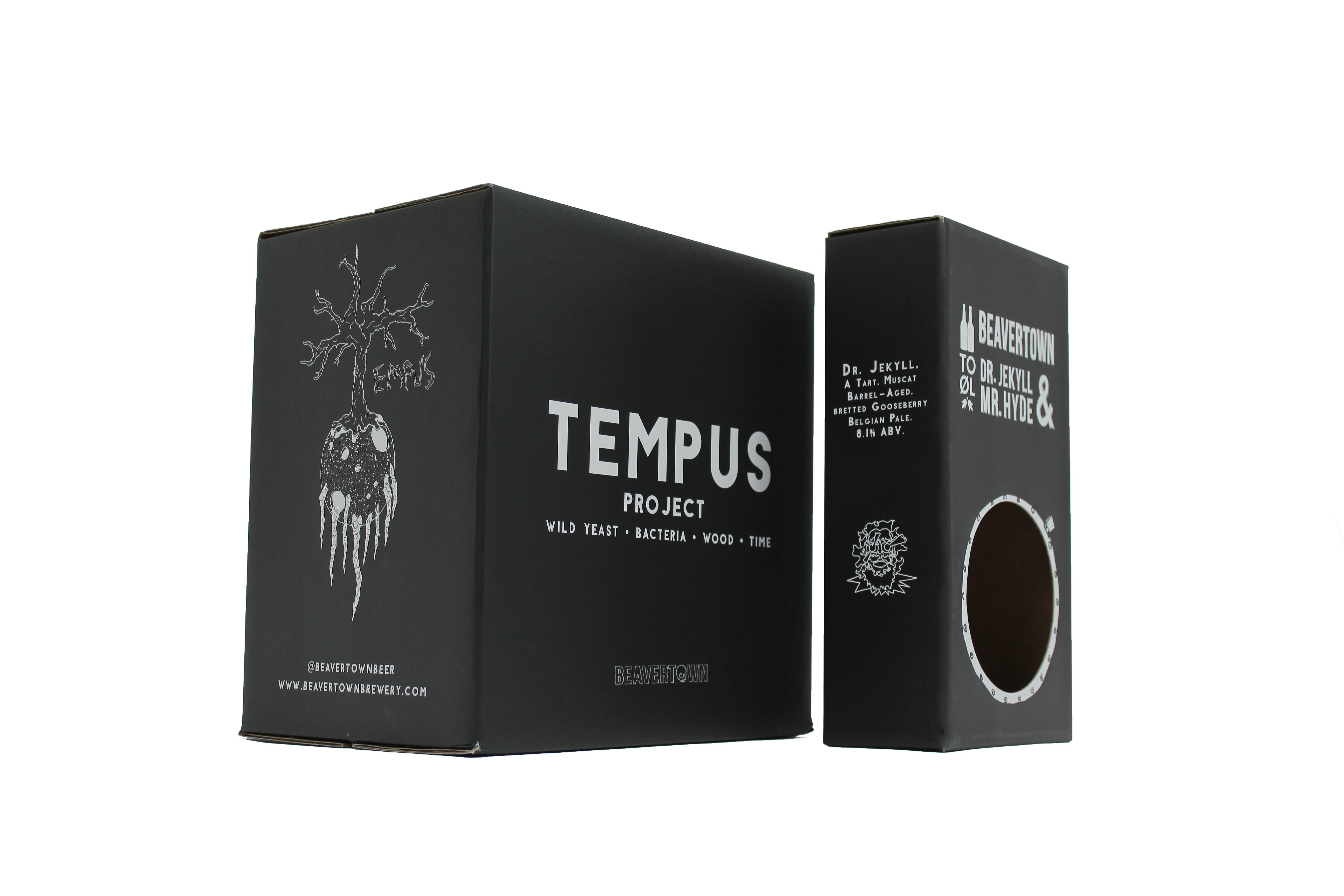 Tempus Project (2)